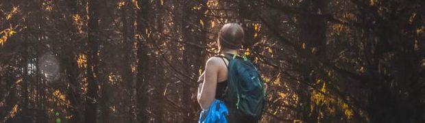 Walking Meditation / Bush walk with breakfast